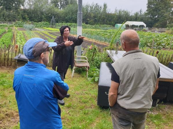 https://boxtel.sp.nl/nieuws/2020/09/spers-helpen-mee-in-voedseltuin